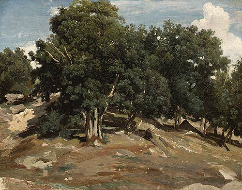 Fontainebleau, Oak Trees at Bas-Breau Camille Corot, 1832-3 Oil on paper laid down on wood; 15 5/8 x 19 1/2 in. The Metropolitan Museum of Art