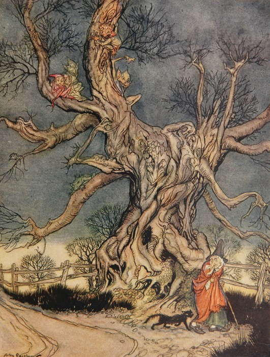 Illustration from The Legend of Sleepy Hollow Arthur Rachham, 1928 photo from Laura Massey The Golden Age of Illustration: Arthur Rackham